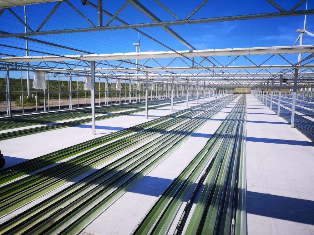 CO2 op grote schaal omgezet naar bioplastic: Photanolfabriek Delfzijl zet nieuwe stap