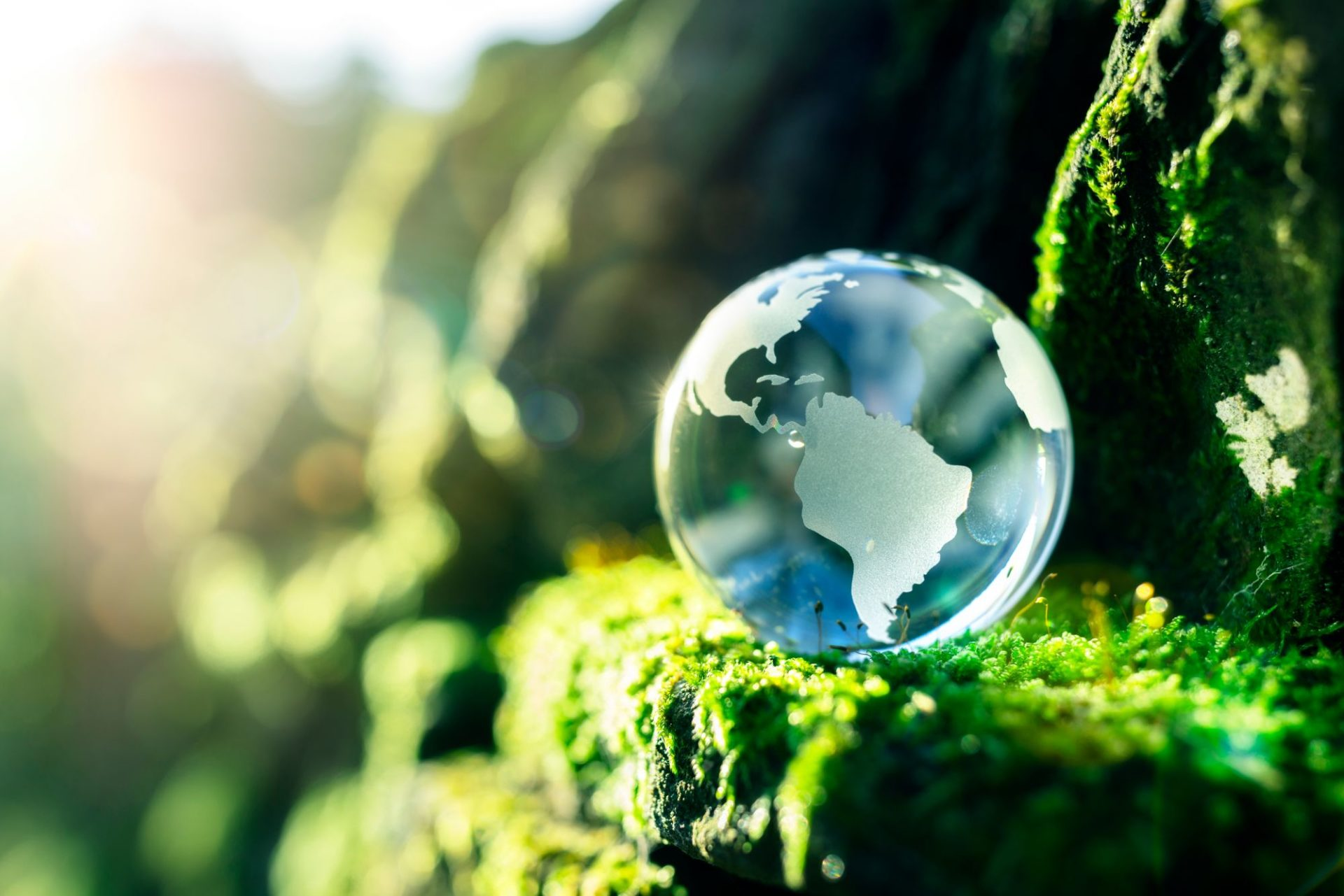 Duurzaam ondernemerschap komt aan op volhouden
